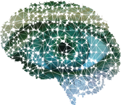 Silicon Spectra Innovation Lab: Neurogenesis Deep Learning